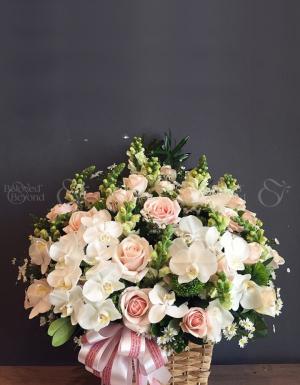 Yêu thương mãi mãi - D24968 - xinhtuoi.online