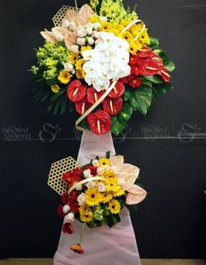 Đại Thành Công - D25014 - xinhtuoi.online