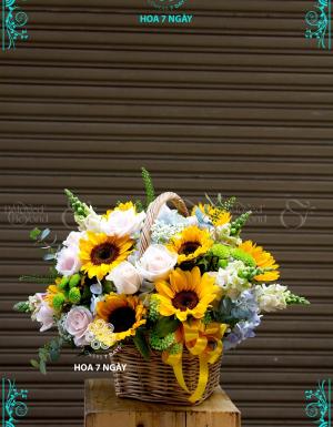 Niềm tin và hy vọng - D25191 - xinhtuoi.online