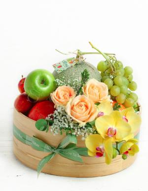 Thân Thương - D25940 - xinhtuoi.online