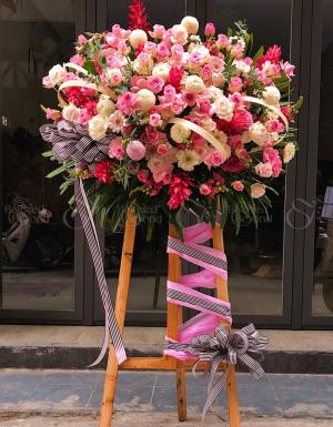Congratulations - D26242 - xinhtuoi.online