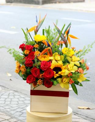 Thành công mới - D24965 - xinhtuoi.online