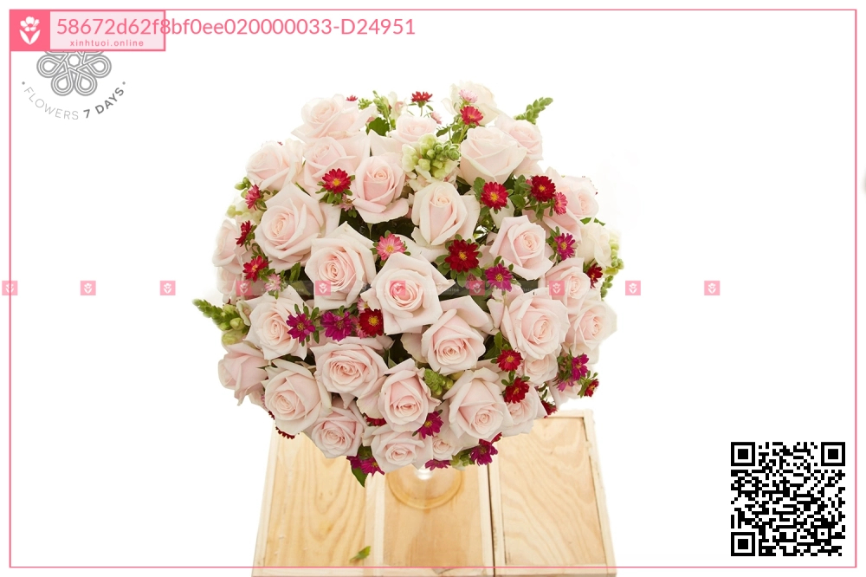 Ngọt ngào - D24951 - xinhtuoi.online