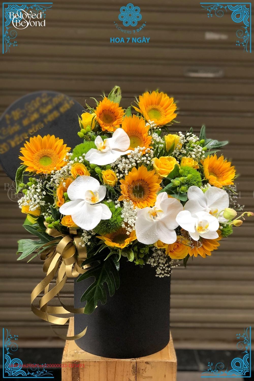 Ánh Nắng của anh - D25493 - xinhtuoi.online