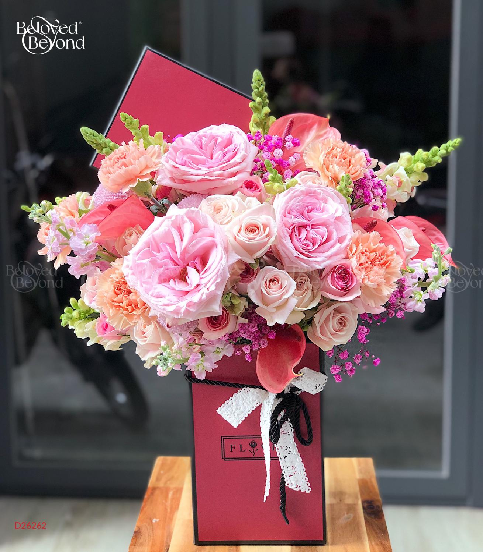 Mùa yêu - D26262 - xinhtuoi.online