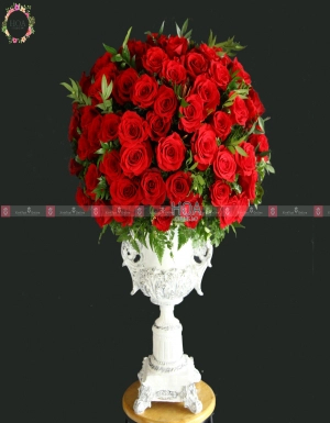Bình Hot Deals - D76335 - xinhtuoi.online