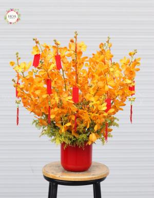 Sung Túc - D79160 - xinhtuoi.online