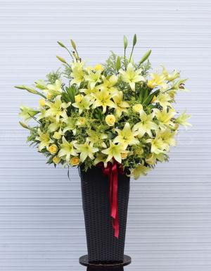 Vui Xuân - D79180 - xinhtuoi.online