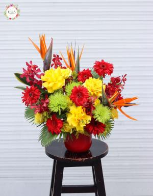 Phú Quý - D79192 - xinhtuoi.online