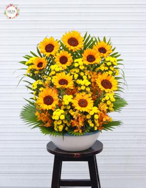 Phước Vĩnh Cửu - D79195 - xinhtuoi.online