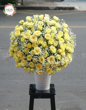 Giọt Nắng - D79302 - xinhtuoi.online
