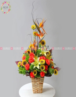 Lẵng Hoa Quà Tặng - D112243 - xinhtuoi.online