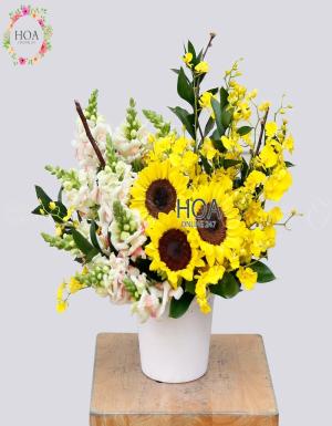 Chậu Hoa Chúc Mừng - D140896 - xinhtuoi.online
