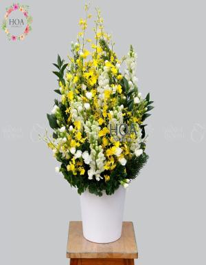 Chậu Hoa Chúc Mừng - D140880 - xinhtuoi.online