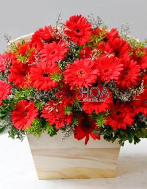 Lẵng Hoa Sinh Nhật - D140942 - xinhtuoi.online