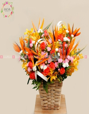 Lẵng Hoa Chúc Mừng - D174479 - xinhtuoi.online