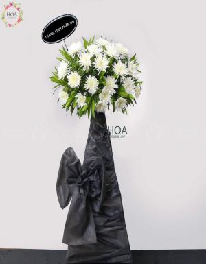 Black Song - D108162 - xinhtuoi.online