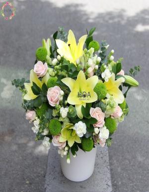 Chậu Hoa Sinh Nhật - D112656 - xinhtuoi.online
