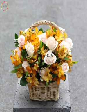 Lẵng Hoa Sinh Nhật - D141251 - xinhtuoi.online