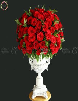 Bình Hot Deals - D179269 - xinhtuoi.online
