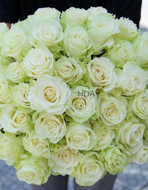 Mùa yêu - D17934 - xinhtuoi.online