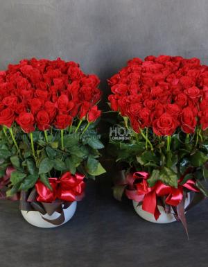 Flower Pot Birthday Flower - D180613 - xinhtuoi.online