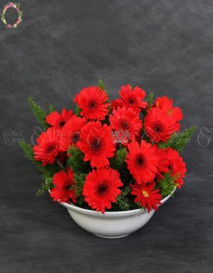 Chậu Hoa Chúc Mừng - D118895 - xinhtuoi.online