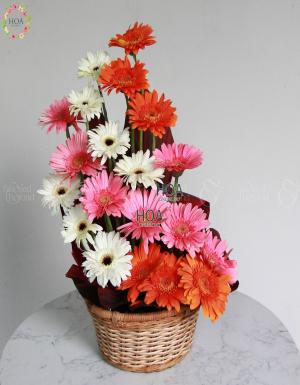 Basket (1) Birthday Flower - D176001 - xinhtuoi.online
