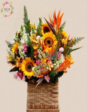 Lẵng Hoa Sinh Nhật - D140859 - xinhtuoi.online