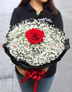 Bó Hoa Sinh Nhật - D176832 - xinhtuoi.online