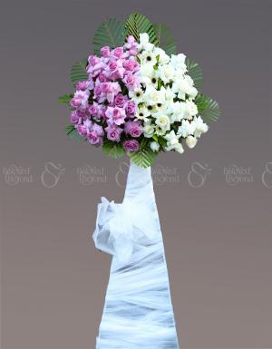 Dĩ Vãng - D115565 - xinhtuoi.online