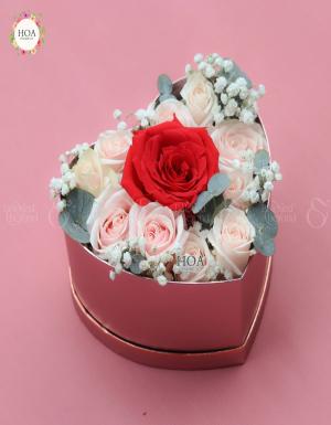 Ngày Ngọt Ngào - D116100 - xinhtuoi.online