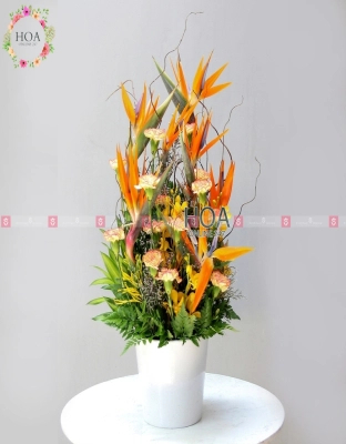 Flower Pot Congratulations Flower - D140853 - xinhtuoi.online
