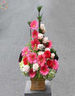 Lẵng Hoa Khai Trương - D141659 - xinhtuoi.online