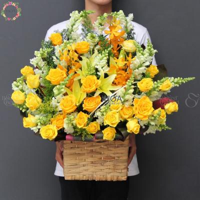 배열 다른 꽃 카테고리 - D196096 - xinhtuoi.online