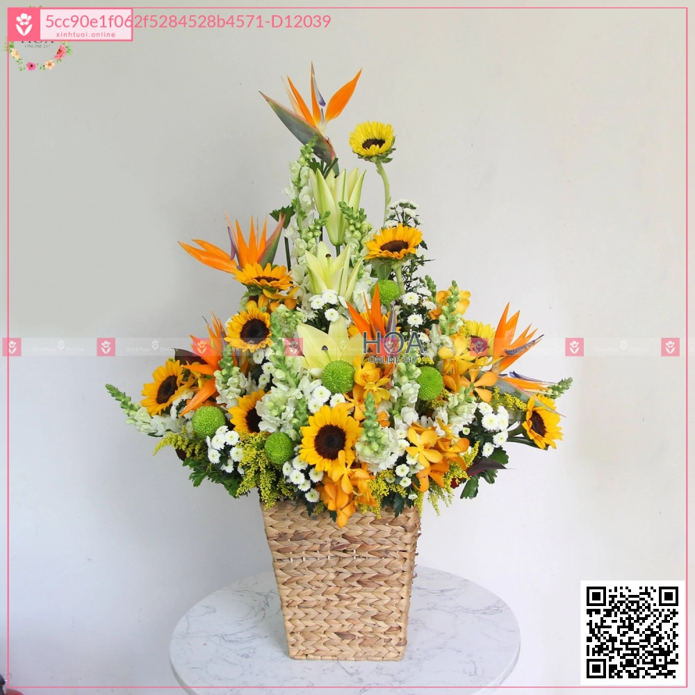 Sunny Day - D12039 - xinhtuoi.online