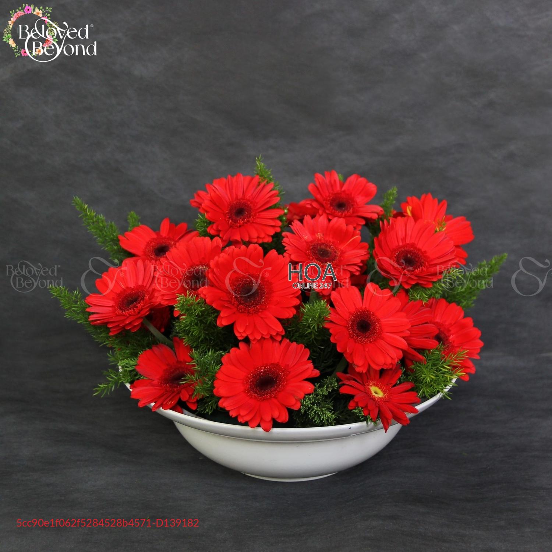 Flower Pot Best Seller - D139182 - xinhtuoi.online