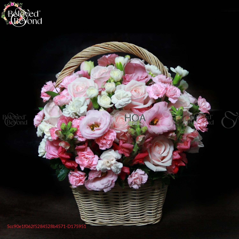 Lẵng Best Seller - D175951 - xinhtuoi.online