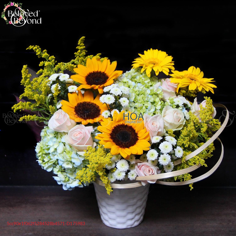 Bình Best Seller - D175983 - xinhtuoi.online