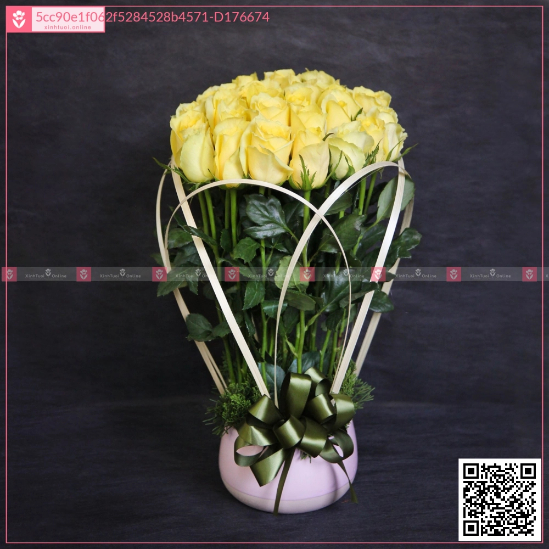 Chậu Hot Deals - D176674 - xinhtuoi.online
