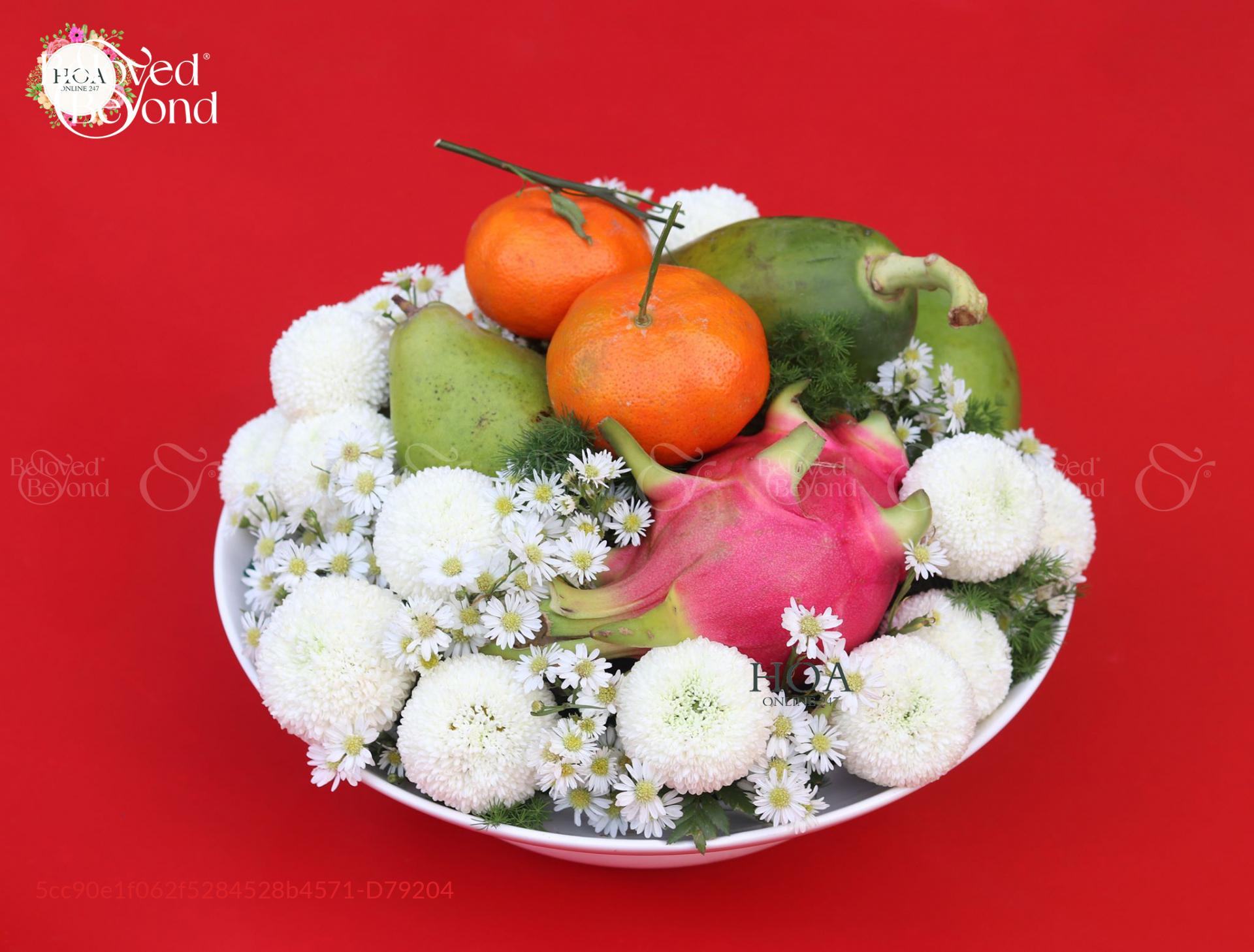 Trọn Vẹn - D79204 - xinhtuoi.online
