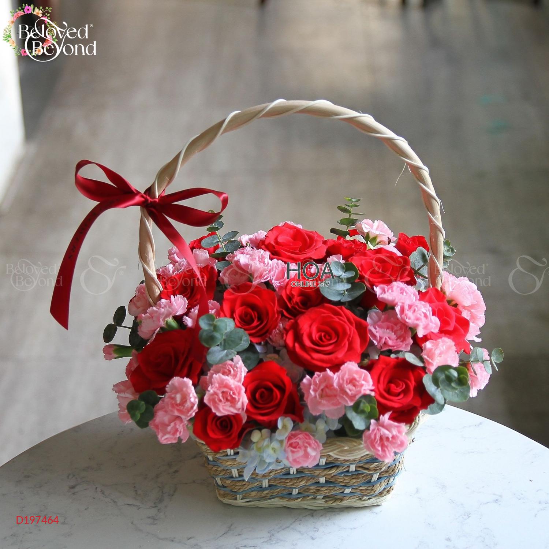 My happiness - D197464 - xinhtuoi.online