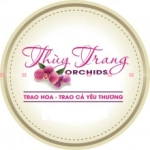 Thùy Trang Orchids