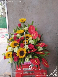 Shop hoa Nhật Hiếu
