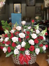 Thuỷ Tiên Flower