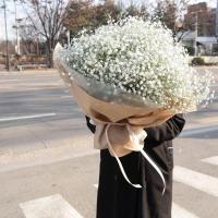 MT Flowers
