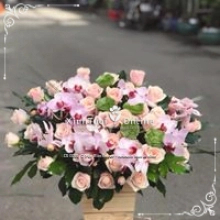 Mộc Bản flower