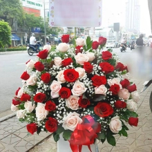 Shop hoa tươi Họa Mi