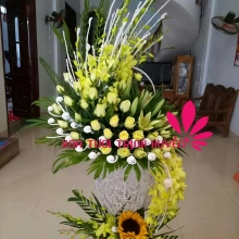 Hoa Tươi Trịnh Huyền