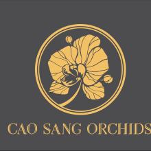 Lan Hồ Điệp Cao Sang